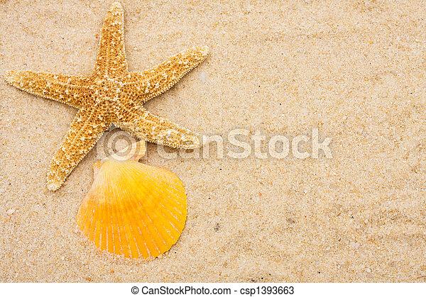 Starfish - csp1393663