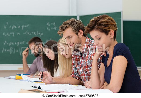Grupo de estudiantes caucásicos determinados a estudiar - csp15789837