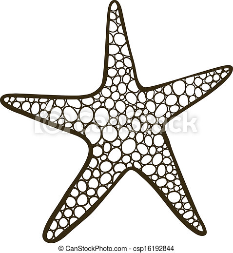 etoile mer - csp16192844