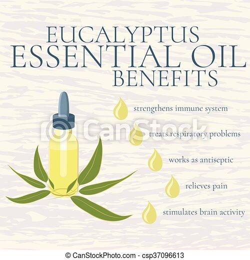 Eucalyptus essential oil benefits infographics - csp37096613