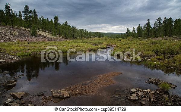 Evening landscape on the creek - csp39514729