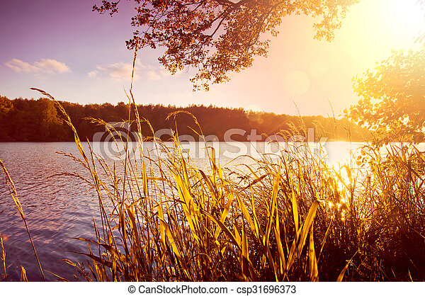 Evening on the lake at summer. - csp31696373