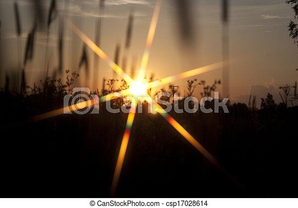 Evening rays of the sun - csp17028614