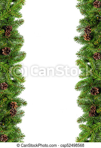 Christmas Tree White Background.Evergreen Branches On White