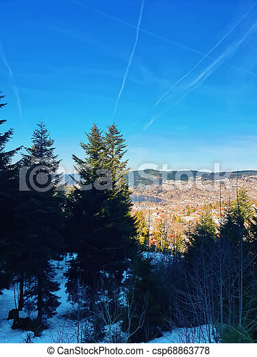 Evergreen coniferous trees on the top of mountain hills - csp68863778