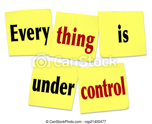 Everything is Under Control Sticky Notes Saying Message - csp21400477