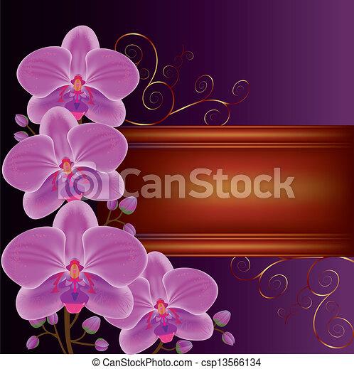 Antecedentes con orquídeas de flores exóticas, decoradas con rizos dorados. Lugar para el texto - csp13566134