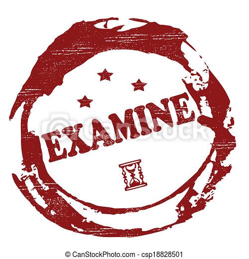 examiner - csp18828501