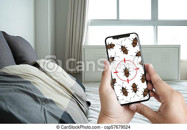 Las mujeres buscan cosas inusuales y detectan bichos en la cama. - csp57679524