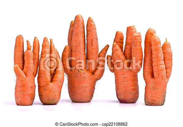 Una cosecha inusual de zanahorias - csp22108862