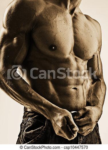 excitado, branca, pretas, torso - csp10447570