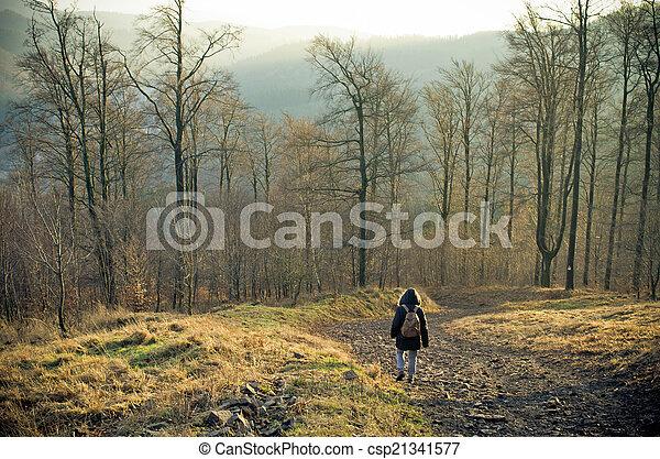 Una mujer caminando en el bosque - csp21341577