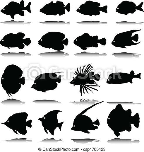exotic fish vector silhouettes - csp4785423