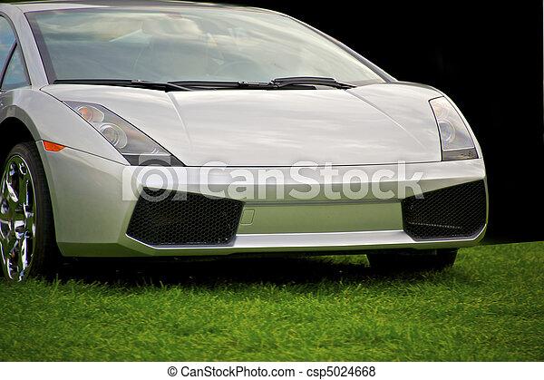 Exotic Italian Sports Car 16 - csp5024668