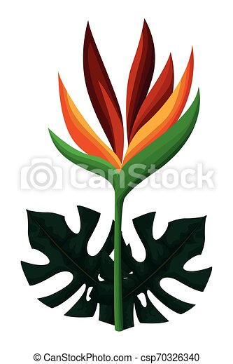 Exotic Tropical Leaves Icon Cartoon Vector Illustration Graphic Design Canstock 115,000+ vectors, stock photos & psd files. https www canstockphoto com exotic tropical leaves icon cartoon 70326340 html