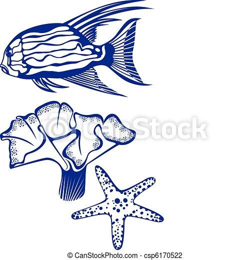exotique, corail, fish, starfish. - csp6170522