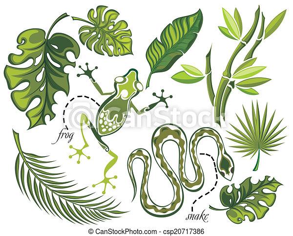 exotique, feuilles, ensemble, reptiles - csp20717386