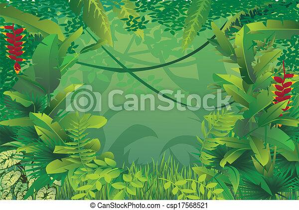 exotique, forêt tropicale - csp17568521