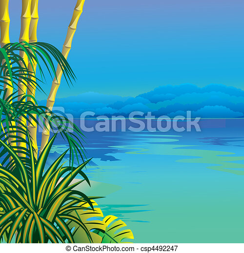 exotique, plage. - csp4492247