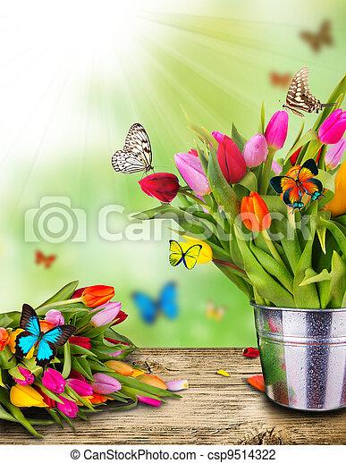 exotique, tulipes, papillons, fleurs, coloré - csp9514322