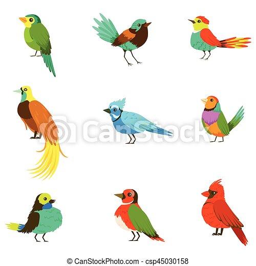 Exotische , tiere, bunte, regen, vögel, einschließlich,... Clipart ...