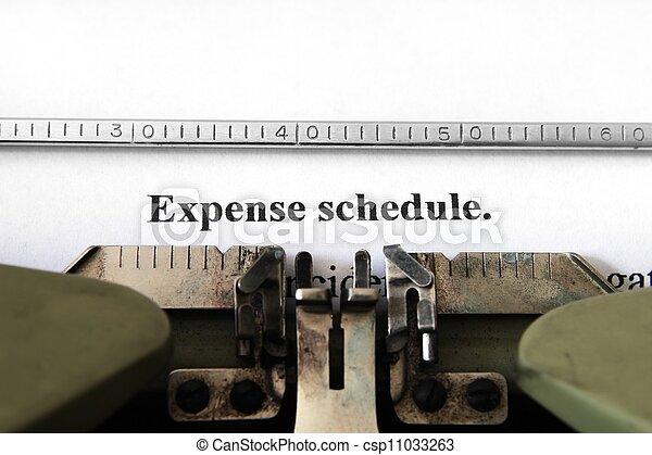 Expense schedule - csp11033263