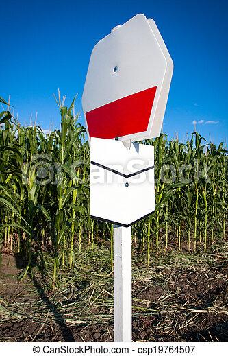 Experimental corn field - csp19764507