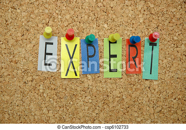 Experto - csp6102733