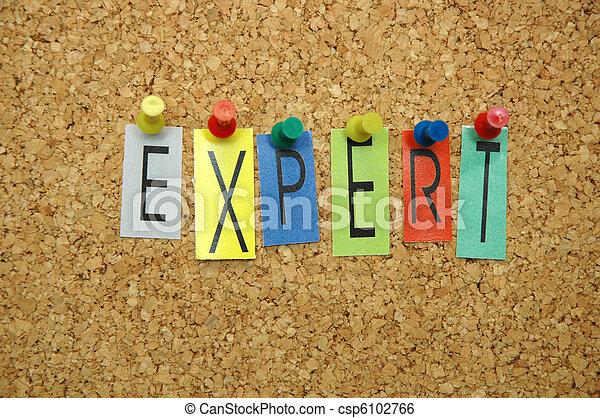Experto - csp6102766