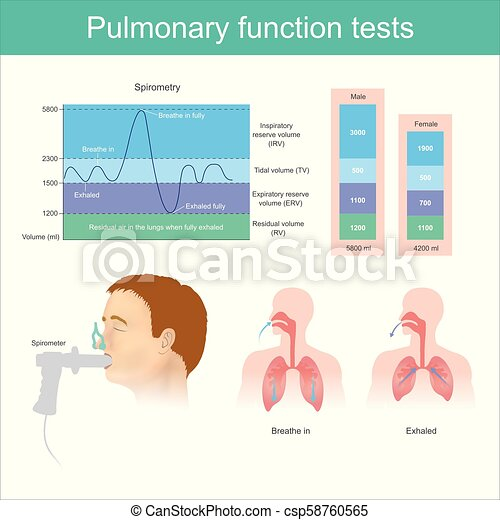 expirer, fully., essai, air, respirer, fonction, poumons, tests., pulmonaire, volume, pendant - csp58760565