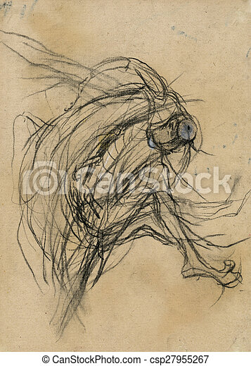 Expressive Drawing The Metamorphosis Image Illustration Of A