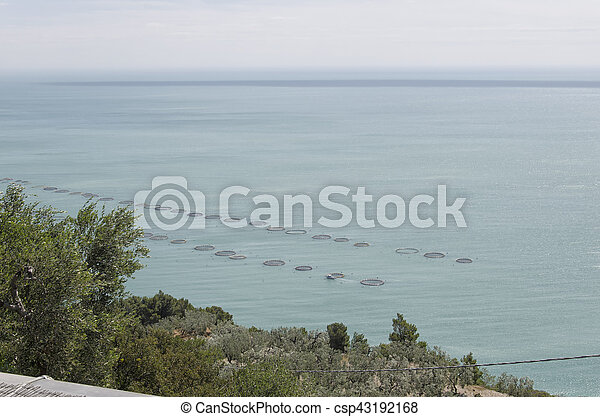 Extensive aquaculture in the Mediterranean sea - csp43192168