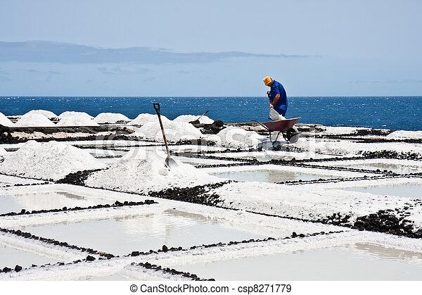 extractie, arbeider, zout, palma, la - csp8271779