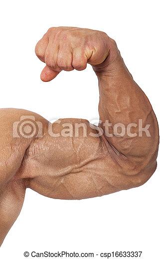 extreem, bodybuilding. - csp16633337