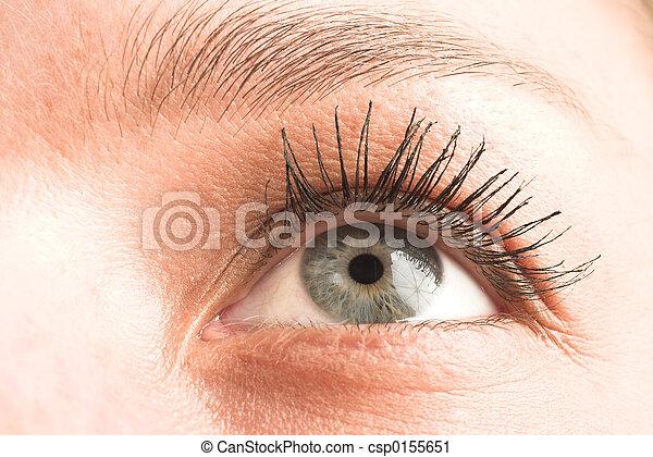 Eye #2 - csp0155651