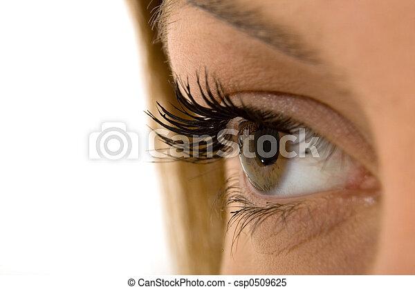 Eye 2 - csp0509625