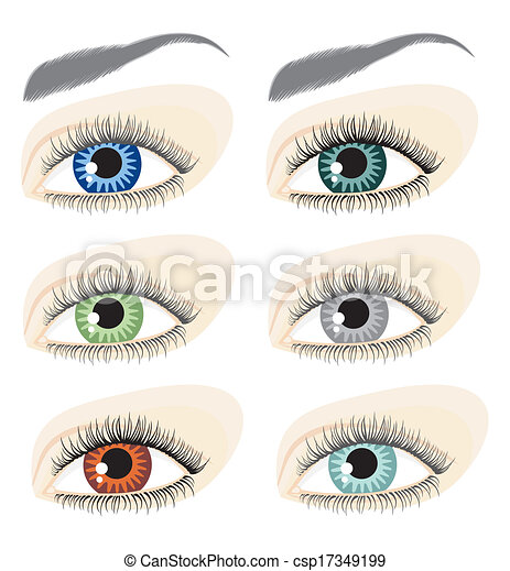eye - csp17349199