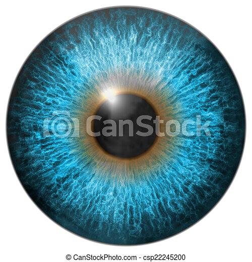 Eye iris generated hires texture - csp22245200