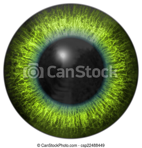 Eye iris generated hires texture - csp22488449