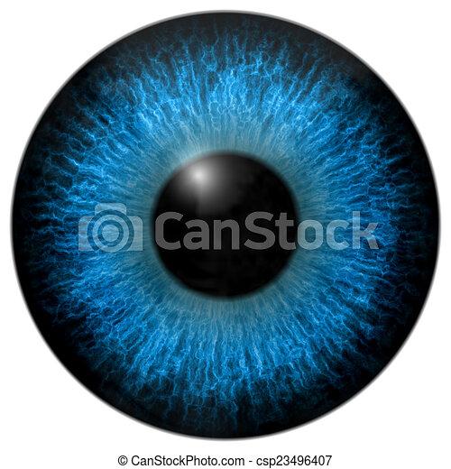 Eye iris generated hires texture - csp23496407