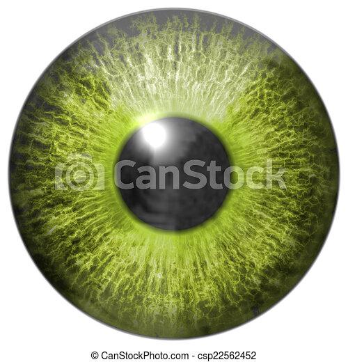 Eye iris generated hires texture - csp22562452