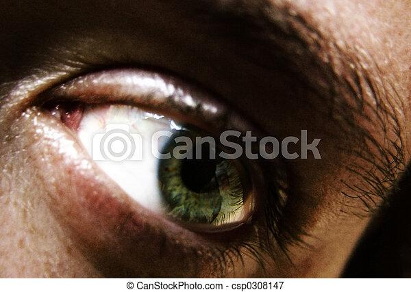 eye - csp0308147