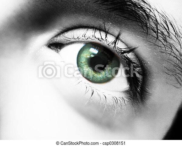 eye - csp0308151
