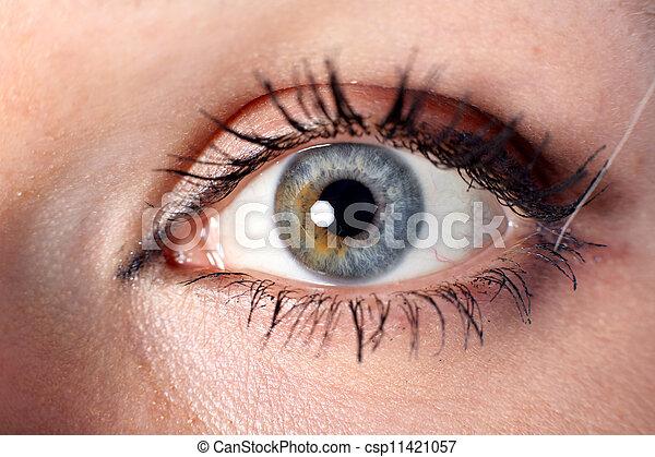 eye - csp11421057