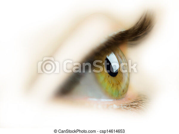 Eye - csp14614653