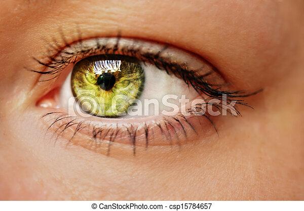Eye - csp15784657