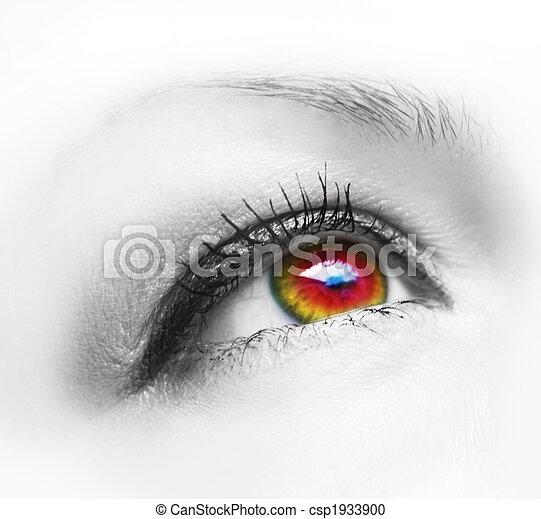 eye - csp1933900