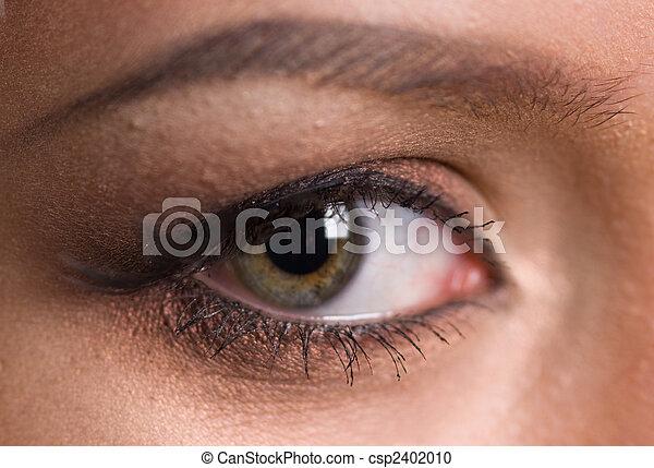 eye - csp2402010