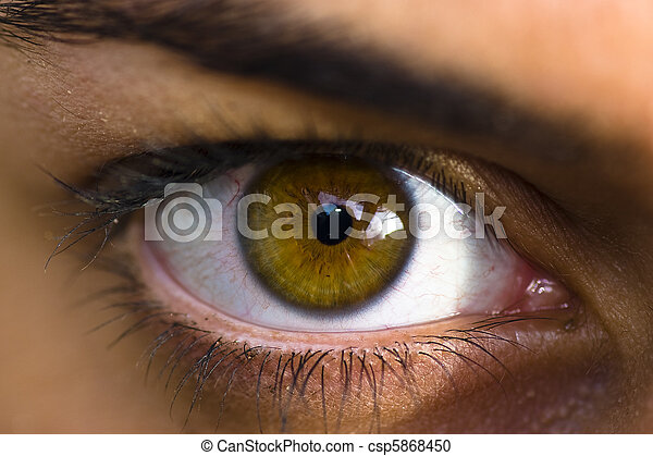 Eye - csp5868450