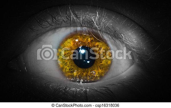eye - csp16318036
